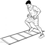 Training, agility and conditioning